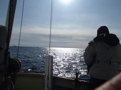 新年初釣魚 - naniyuutorimannen - 您说什么!