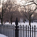 Small photo of Salem Common