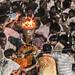 Gujarat : Rupal, Ghee Festival #38