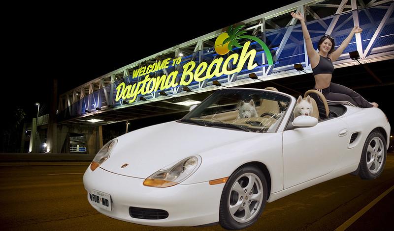 Dogs Driving Porsche To Daytona Beach