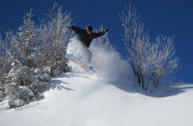 Bretton Woods powder