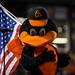 Orioles Baseball '16