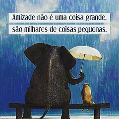 #blogauroradecinemafrases  #amazing #amizade #amistad  #toptags #clouds #20likes #cool #instagood #webstagram