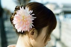 頭上的花也好美