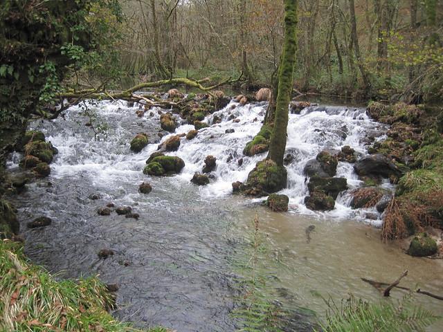 Río Barragán en Fornelos de Montes