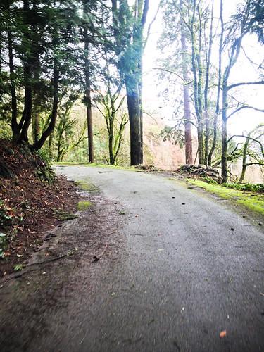 SW-Portland-Week-Day-2-2
