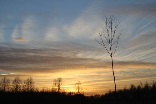 light sunset sky colour nature silhouette canon countryside dusk radleylakes 1000d