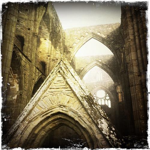 Tintern Abbey on a misty morning