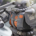 GBWC2014_World_representative_exhibitions-194