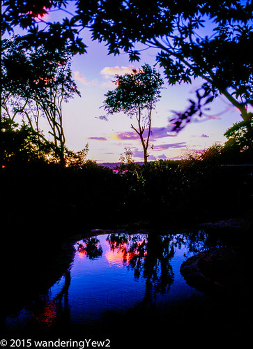 sunset reflection 120 mamiya film mediumformat geotagged costarica swimmingpool monteverde filmscan mamiya7ii wildernesstraveltour geo:lat=1031322 geo:lon=84823661