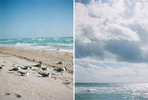 RYALE_Florida-014