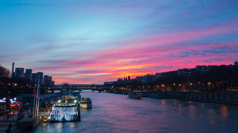 La Seine Rose