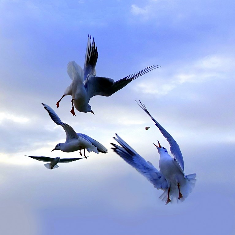 Air Ballet