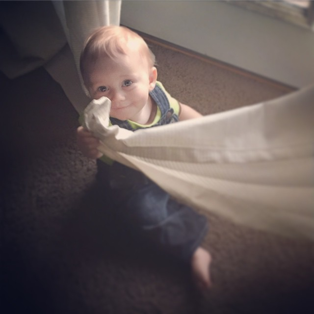 Peek a boo curtains! by bartlewife