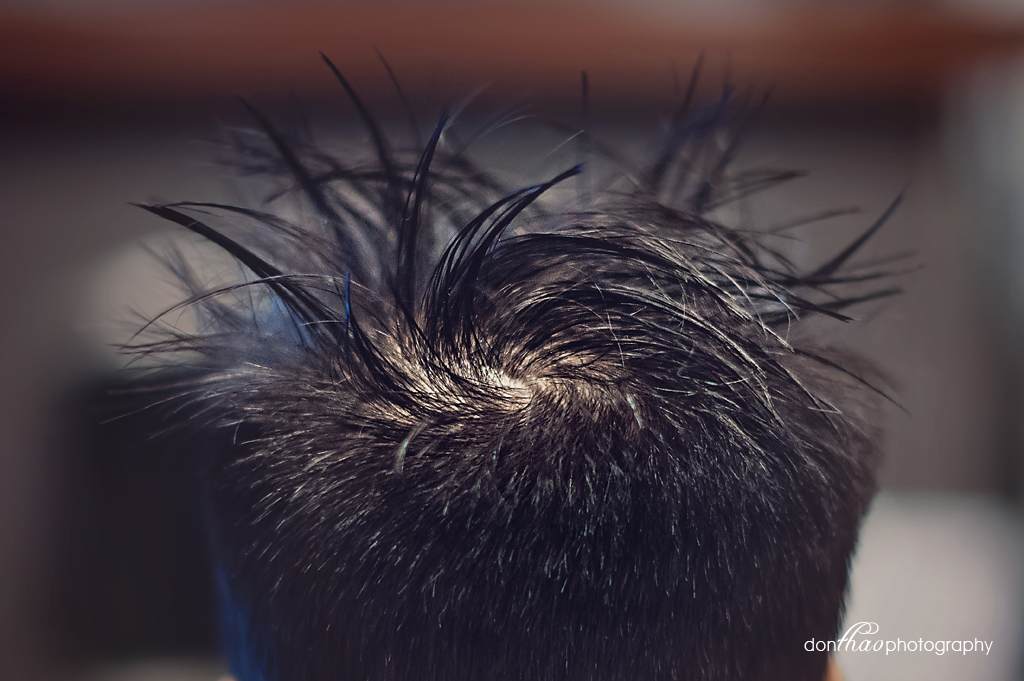 personal 365 - wild toddler hair photography