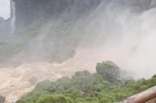 【写真】2015 世界一周 : イグアスの滝・ロワートレイル(2)/2015-01-05/PICT7506