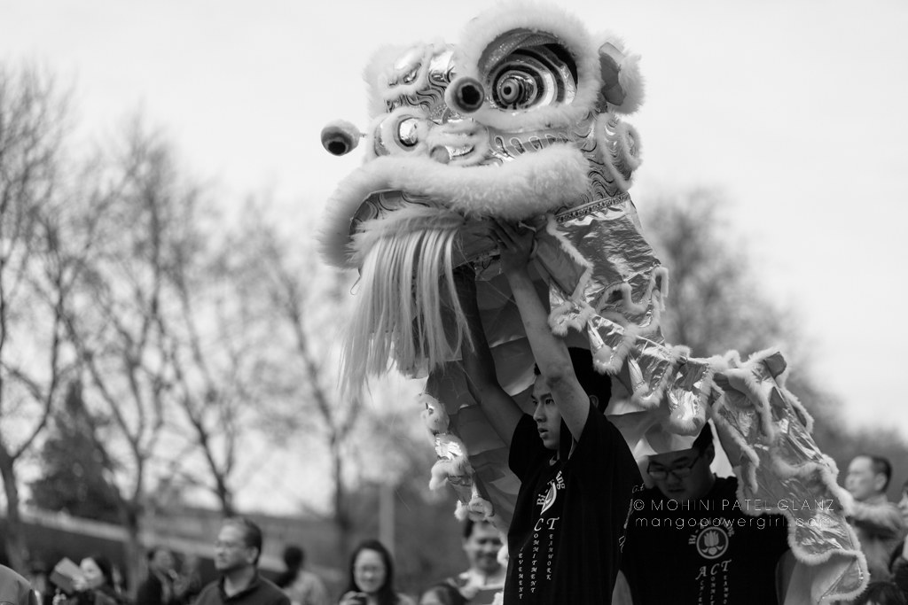 lunar new year lion dance