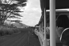 Oahu - Dole Plantation Train tour