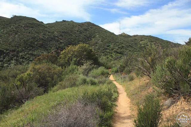 las virgenes canyon 39