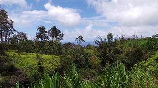 Makapipi Scenery