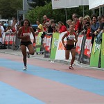 2010 BE Migrossprint