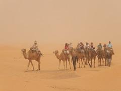 The Sahara near Ksar Ghilane (الصحراء حول قصر غيلان)