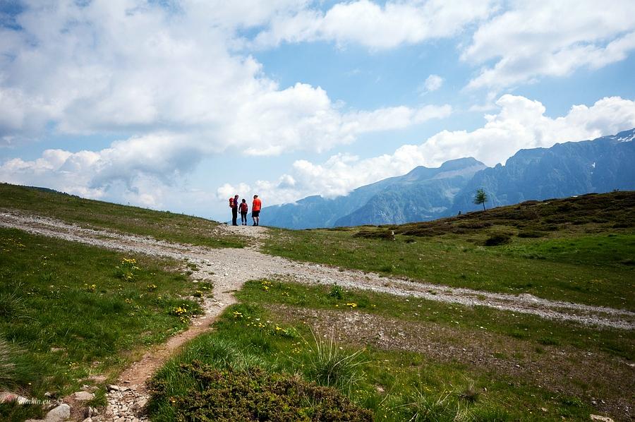 Campo Carlo Magno, Trentino, Trentino-Alto Adige, Italy, 1/2500 sec, f/8.0, 2016:06:29 08:59:22+00:00, 20 mm, 10.0-20.0 mm f/4.0-5.6