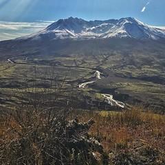 Mt. St. Helens sporting a new coat of snow. #adventureinspired #modernoutdoors #CreateExplore #awesomeearth #earthfocus #wildernessculture #pnwonderland #NorthwestCreatives #pnwspotlight #theelys #mtsthelens #giffordpinchot
