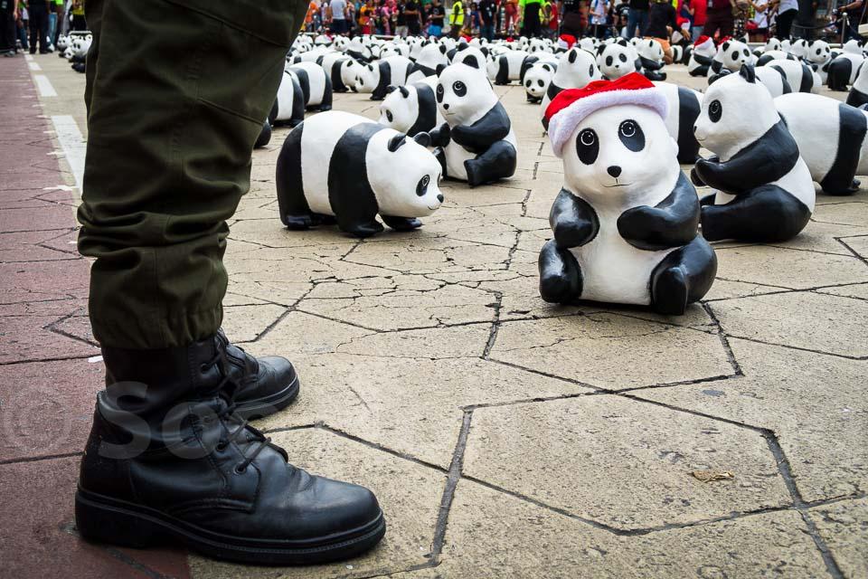 1,600 pandas arrive @ Kuala Lumpur, Malaysia