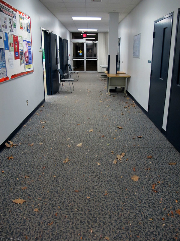 Someone should rake the hallway.