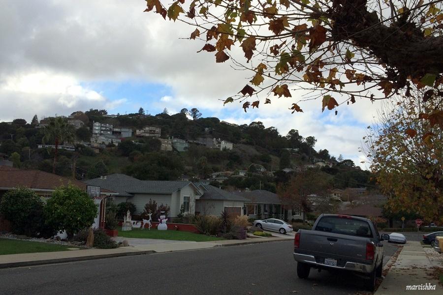 walking San Carlos