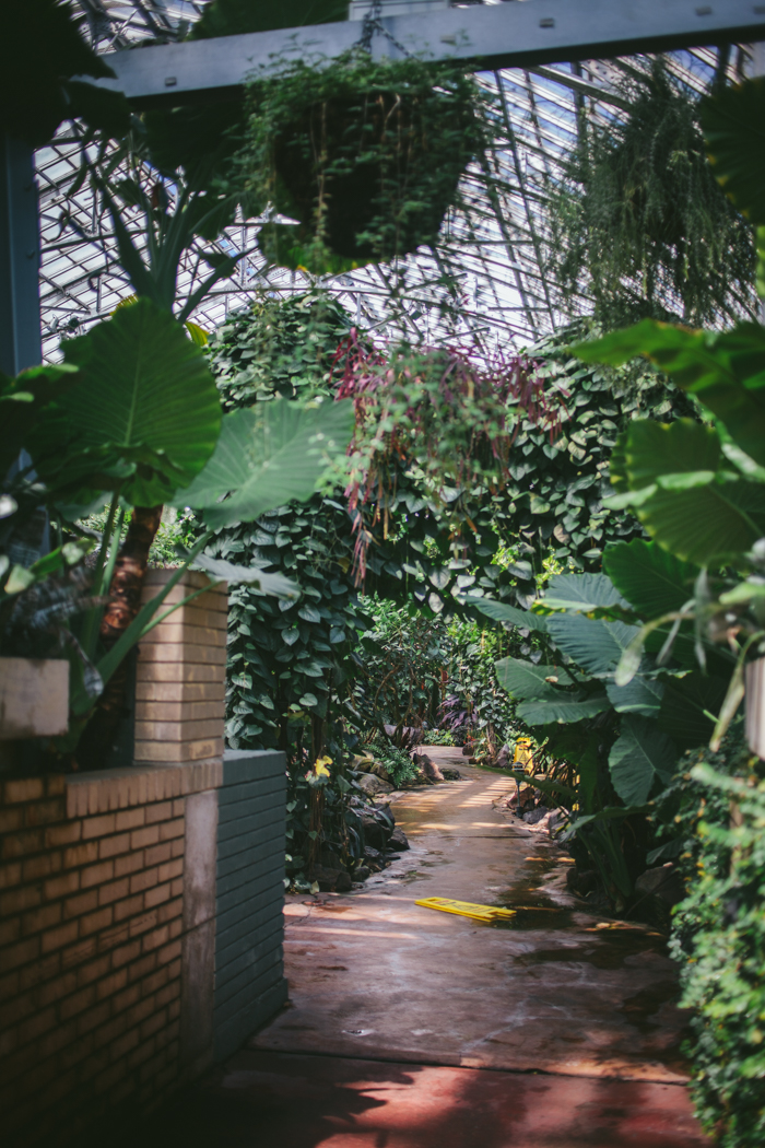 Chicago Conservatory By Eva Kosmas Flores | Adventures in Cooking