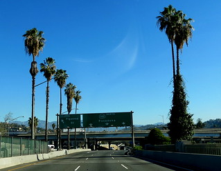 The Road To Pasadena Is Paved With Palms