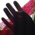 I have been hoarding fruit netting. #palmed365 #hoarder #SADlight #fullspectrum