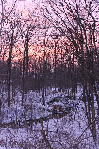 morning trees winter red water clouds sunrise woods stream purple michigan brook redsky saline purplesky purplemorning redmorning saline01172015