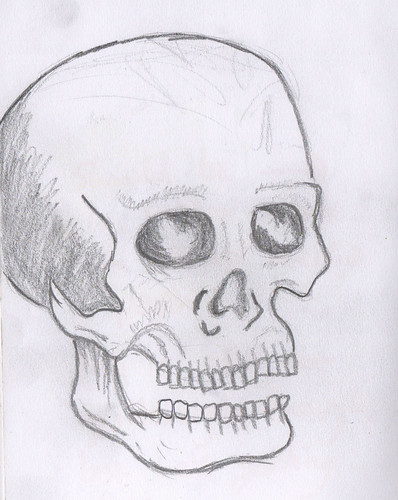 anotherskull
