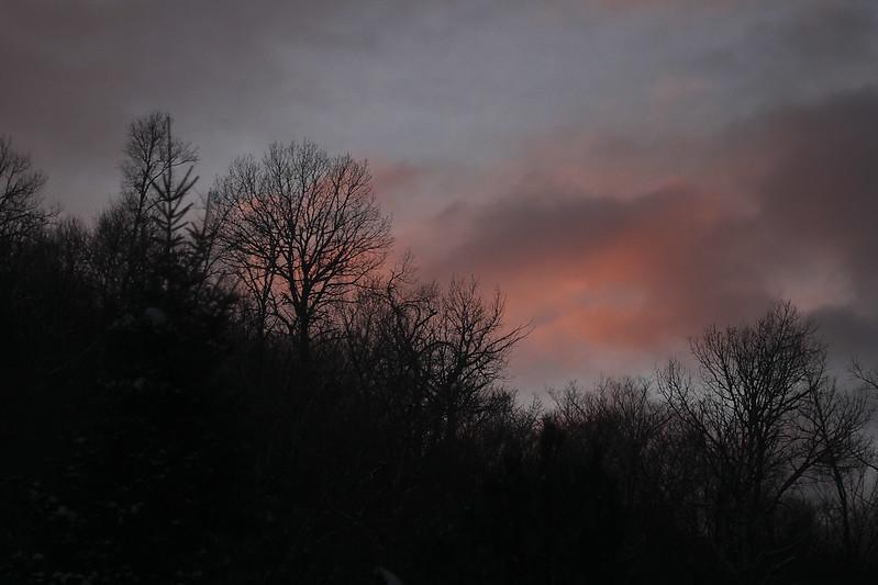 Pink Valentines dusk5