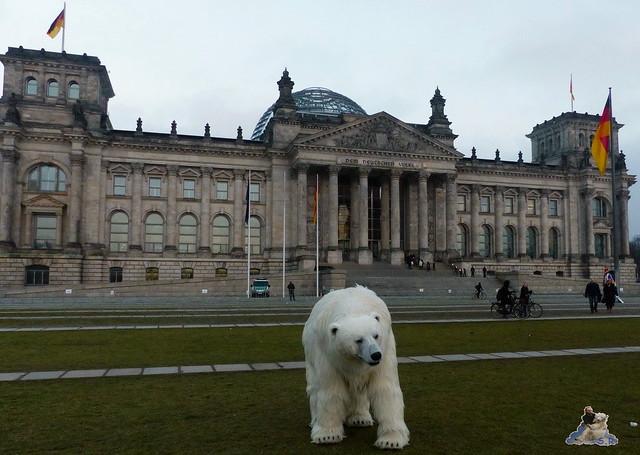 Eisbär, Polar Bear Ralph, Fortitude Berlin 12.02.20158