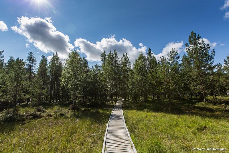 Sami Center Laponia Sueca-6