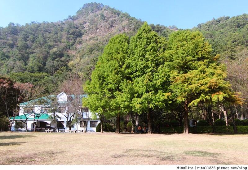 清境觀光巴士 奧萬大森林遊樂區 賞楓19-