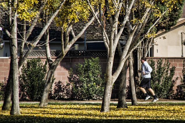 Furman Park jogger