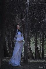 Ao Dai Trang Vietnamese Traditional Dress Viet Nam Fashion Model Tree