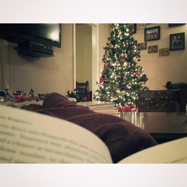 fridaynighthappinessbooksandchristmaslights