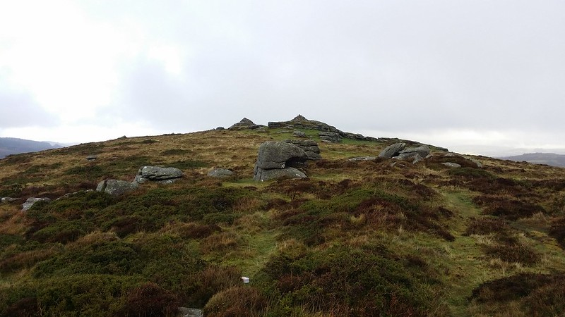On Chinkwell Tor #dartmoor #sh