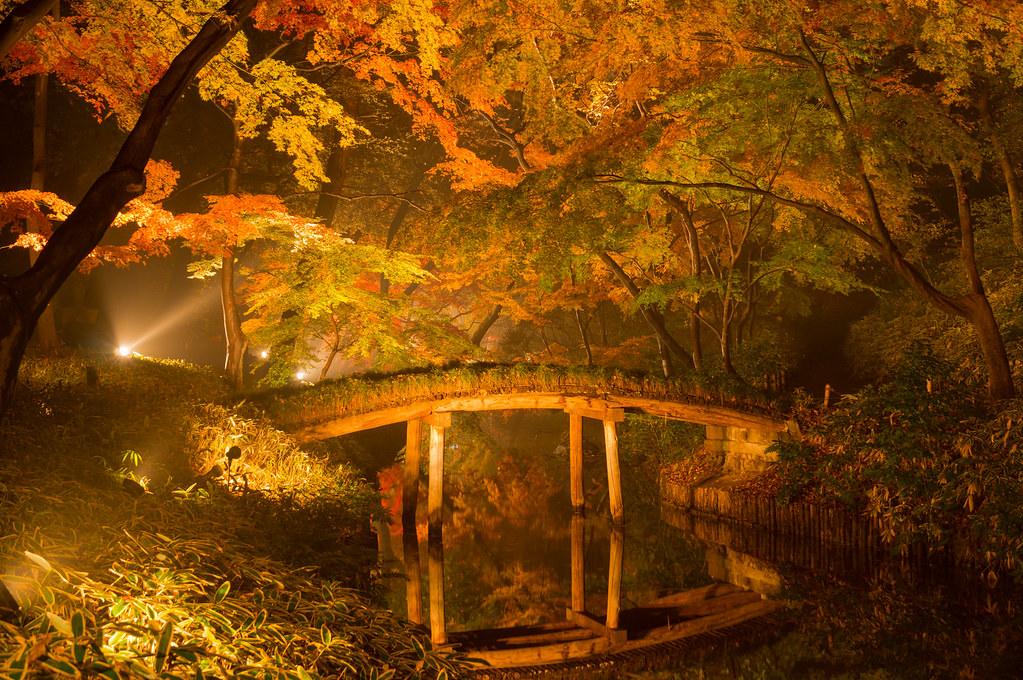 六義園 紅葉 『山陰橋』