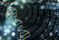 Thanks to the new technology, laptop computers can analyze DNA sequences faster than current DNA sequencers create them.