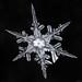 Snowflake-a-Day #29 by Don Komarechka