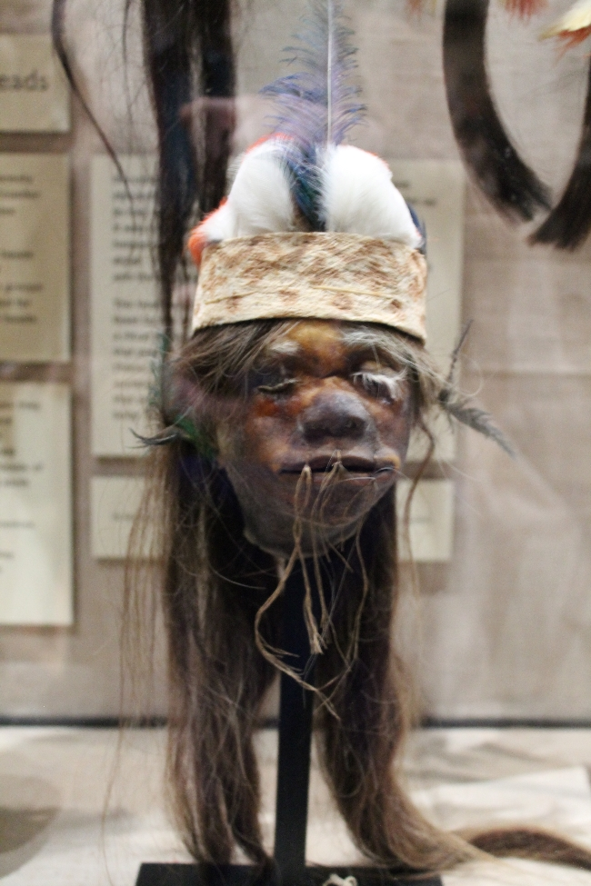Shrunken Head at pitt rivers museum