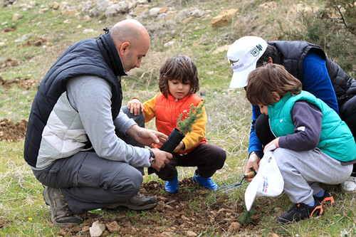 Tree planting in Kfardebian, Mount Lebanon. (Photo Credit: Lebanon Reforestation Initiative)