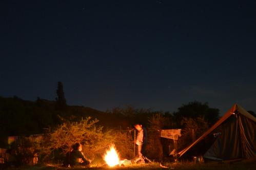 Noches de campamento